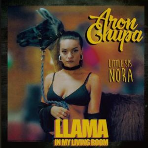 AronChupa, Little Sis Nora - Llama In My Living Room