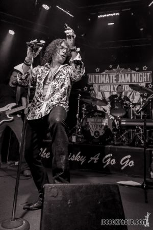 Concert Review & Photos - Ultimate Jam
